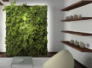 Interior Design Trends for Millennials sustainable design